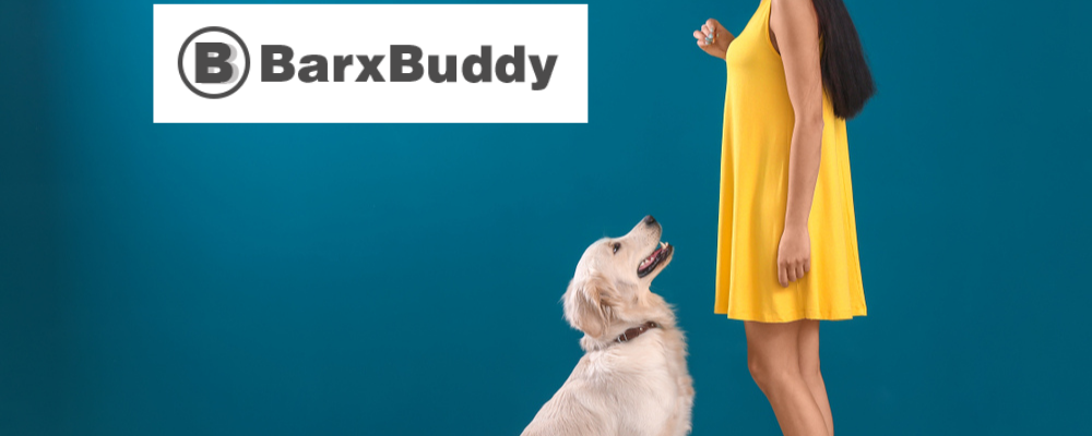 Are Professional Dog Trainers Worth It? 3 Ways BarxBuddy Can Help At Home